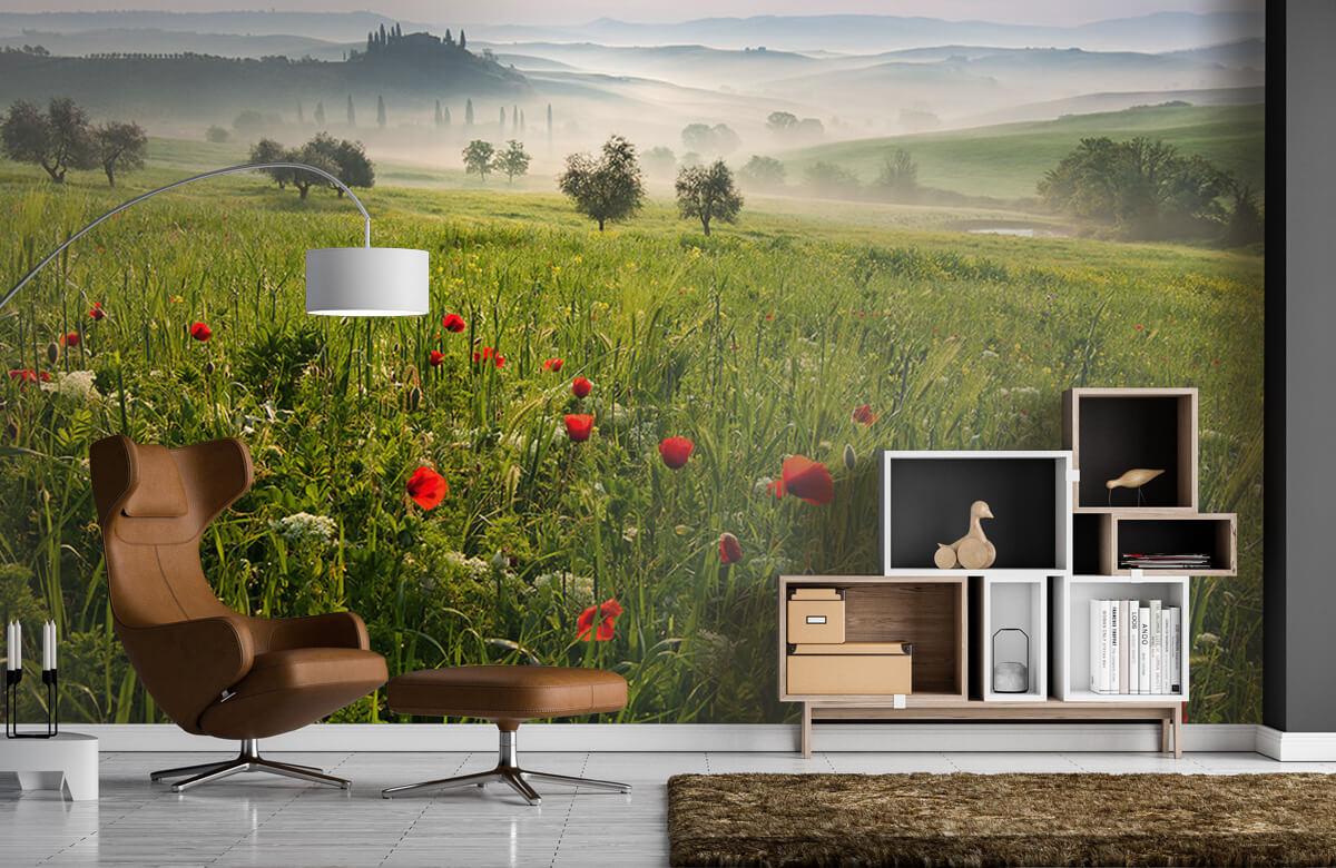 Landscape Tuscan spring 9