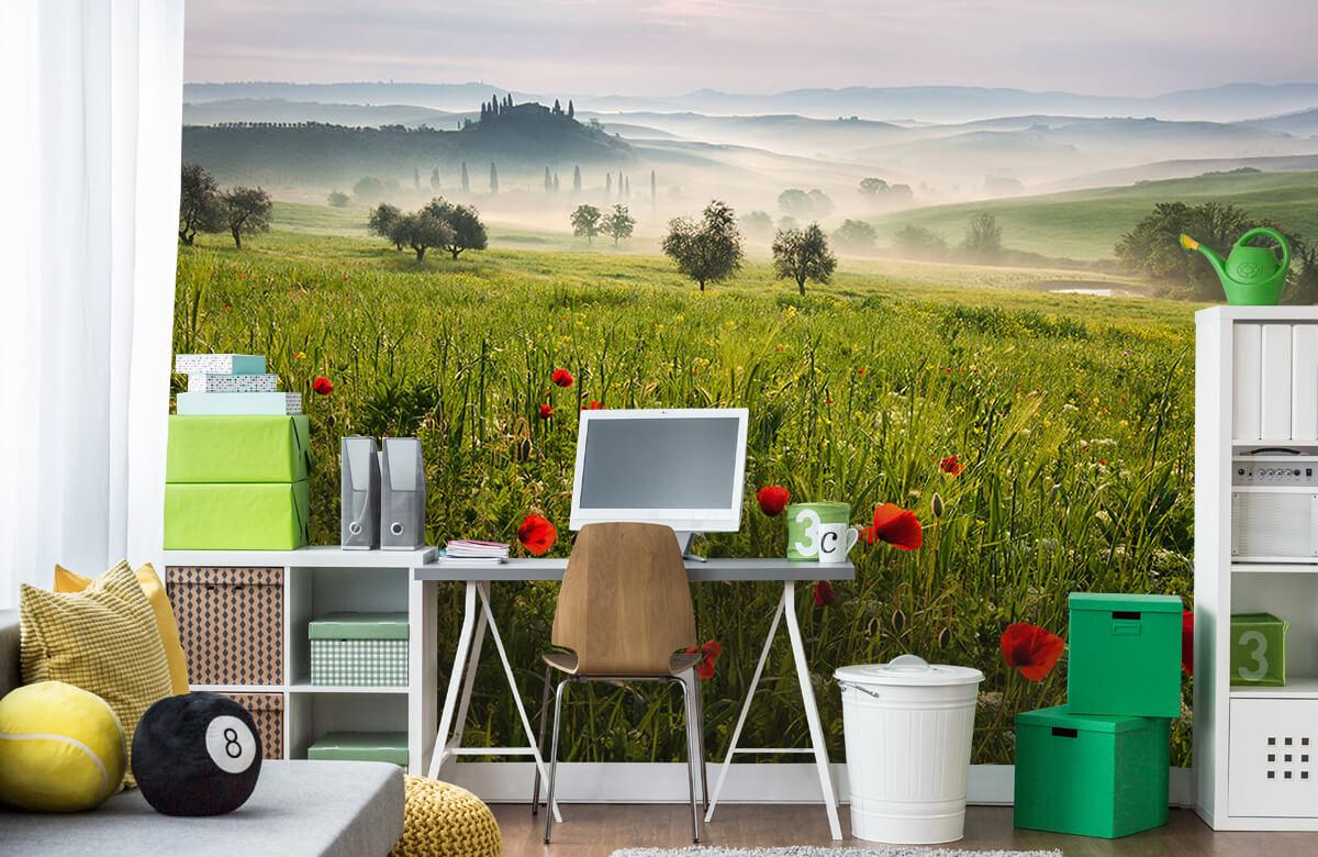 Landscape Tuscan spring 4
