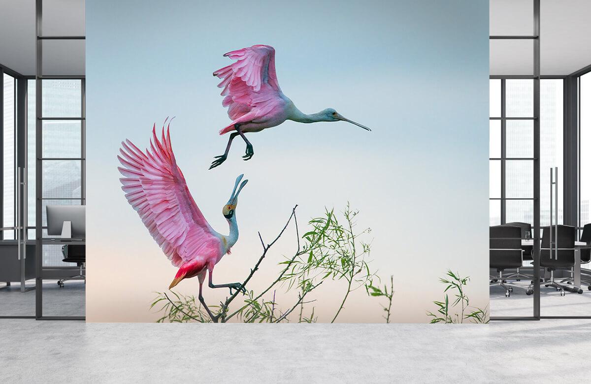 Wildlife Rosy pair 8