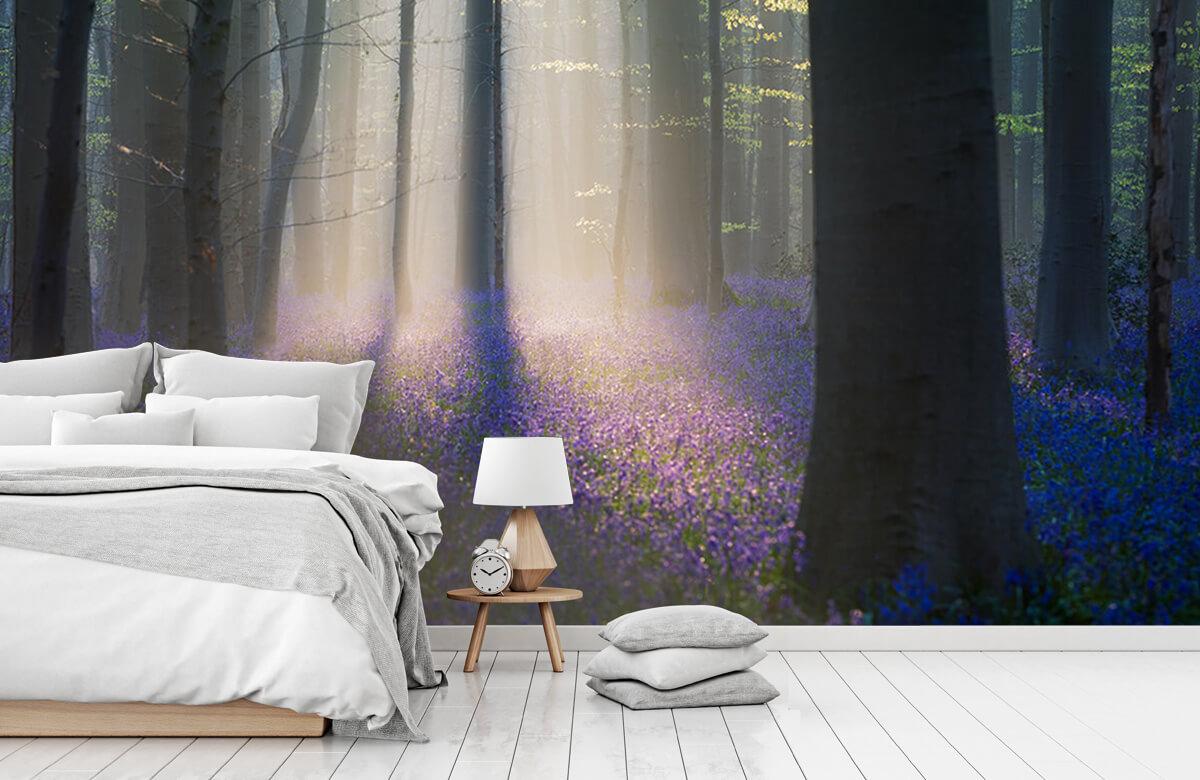 Landscape Velvet Light 1