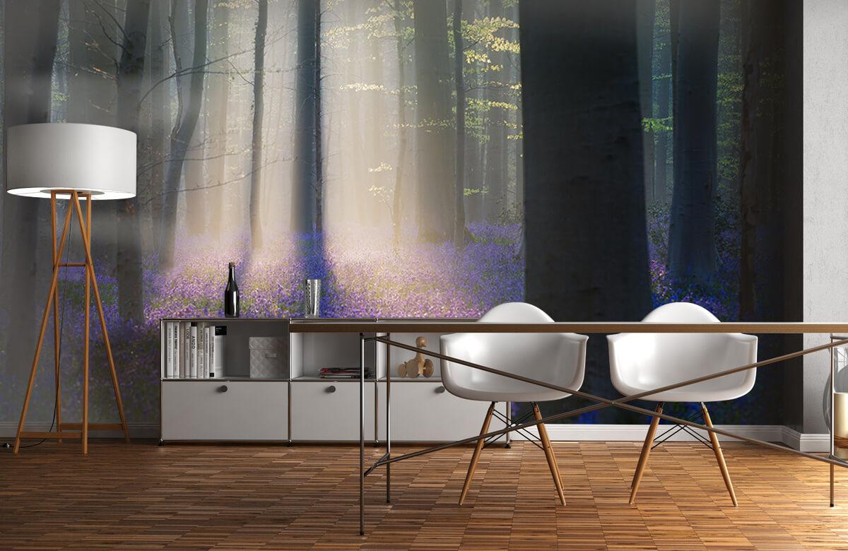 Landscape Velvet Light 2