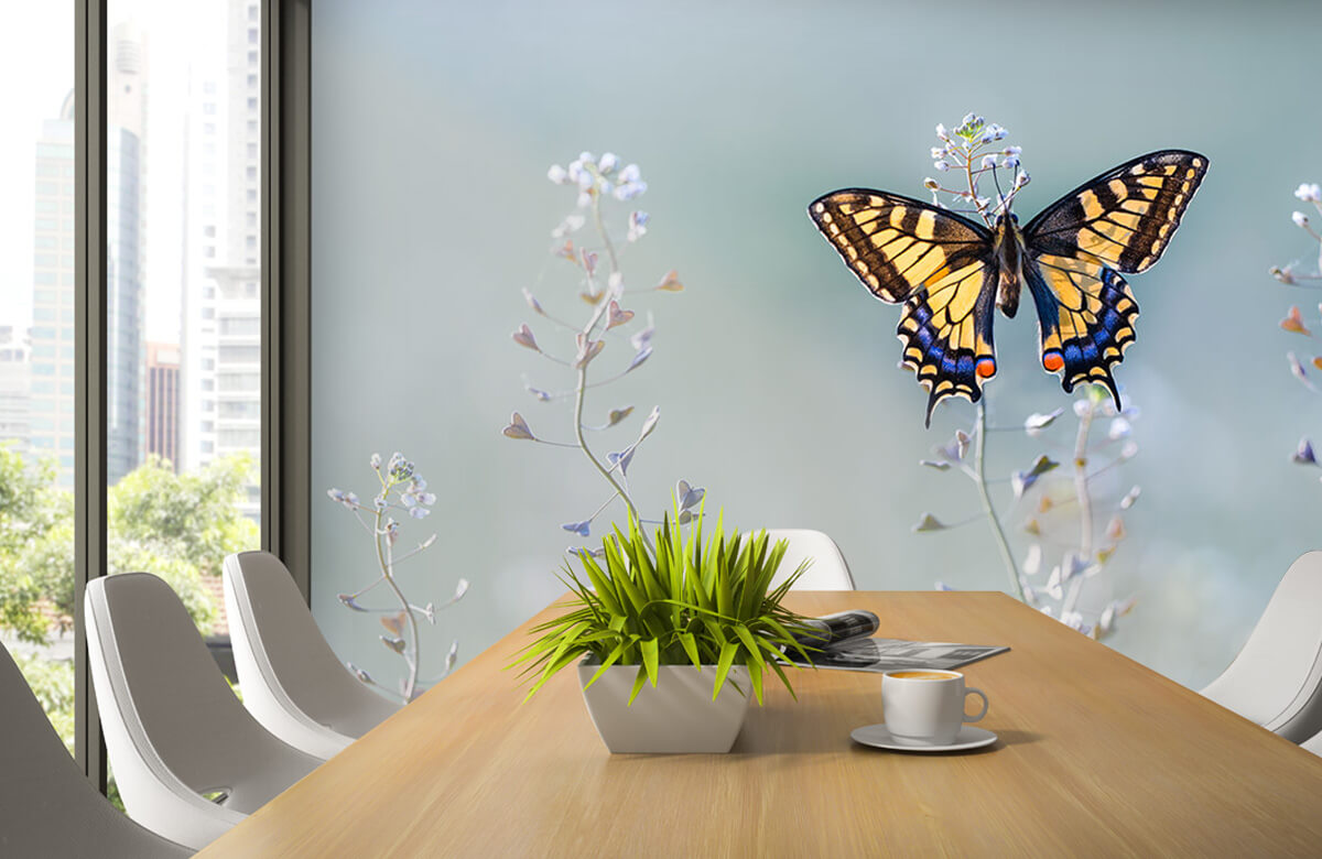 Macro Swallowtail beauty 4