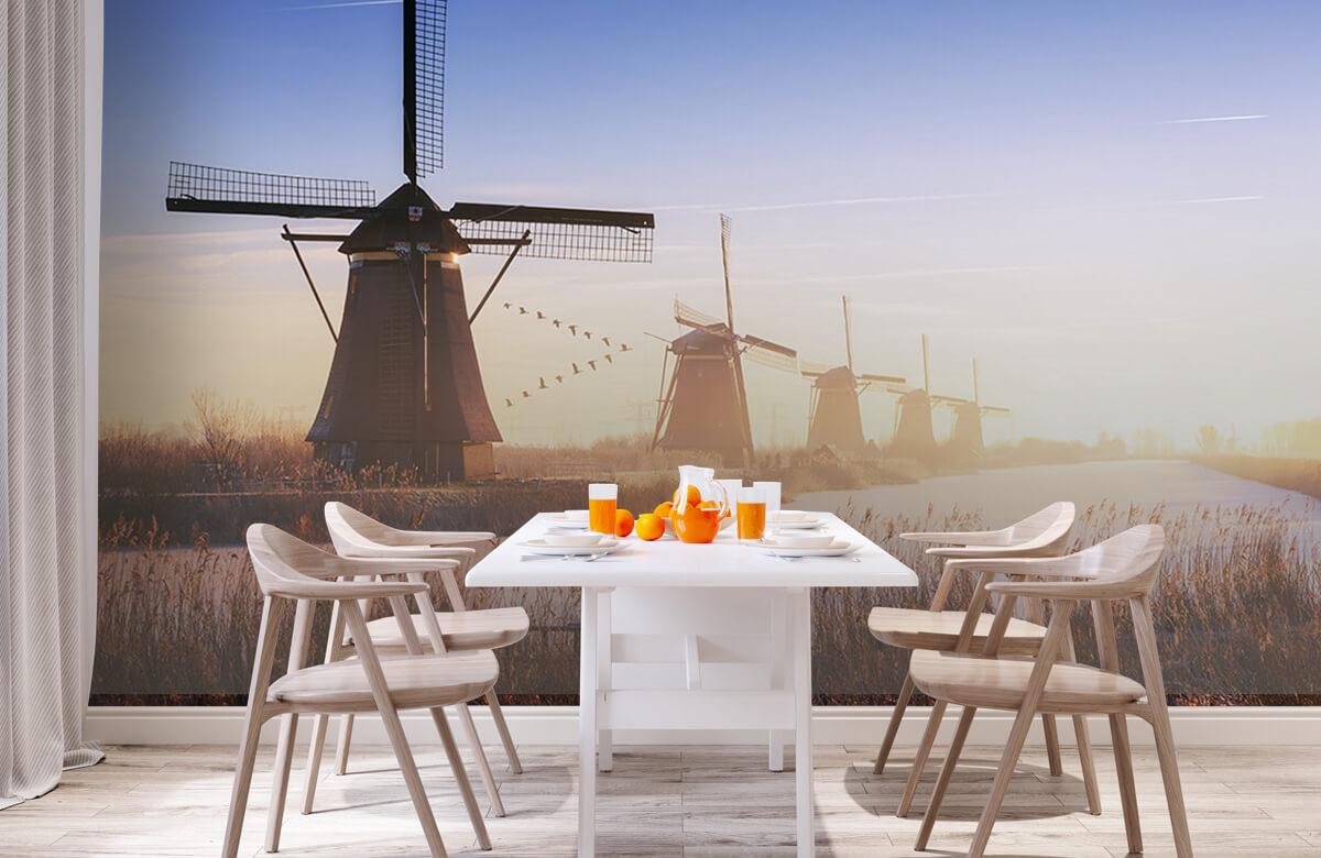 Landscape Kinderdijk 4 3