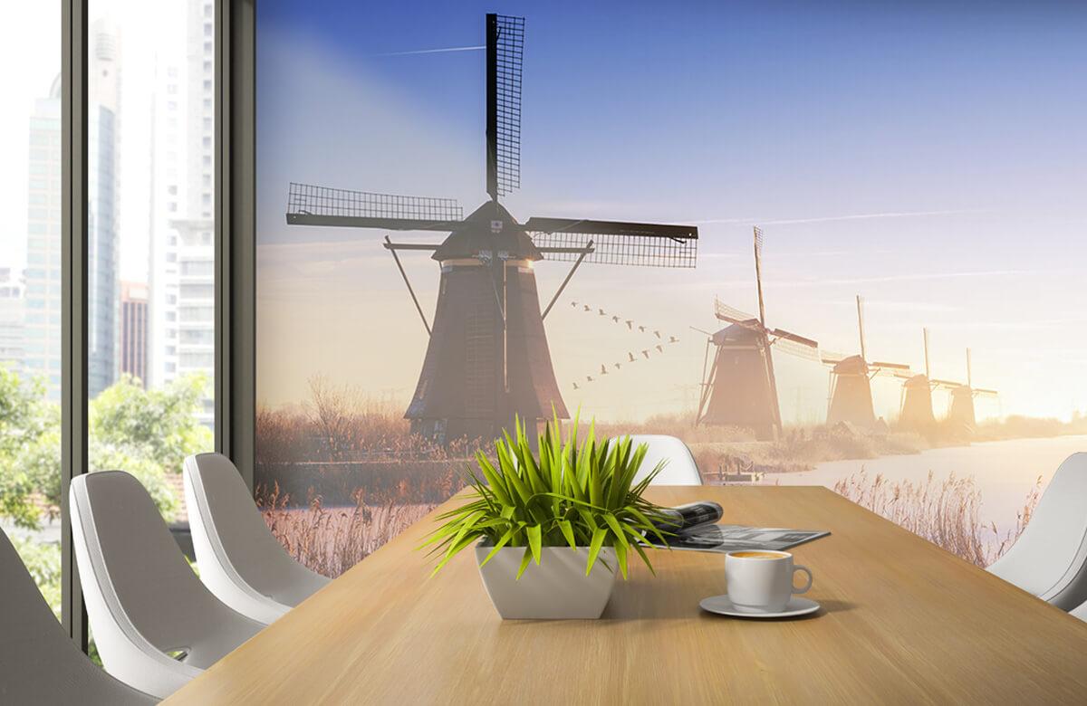 Landscape Kinderdijk 4 5