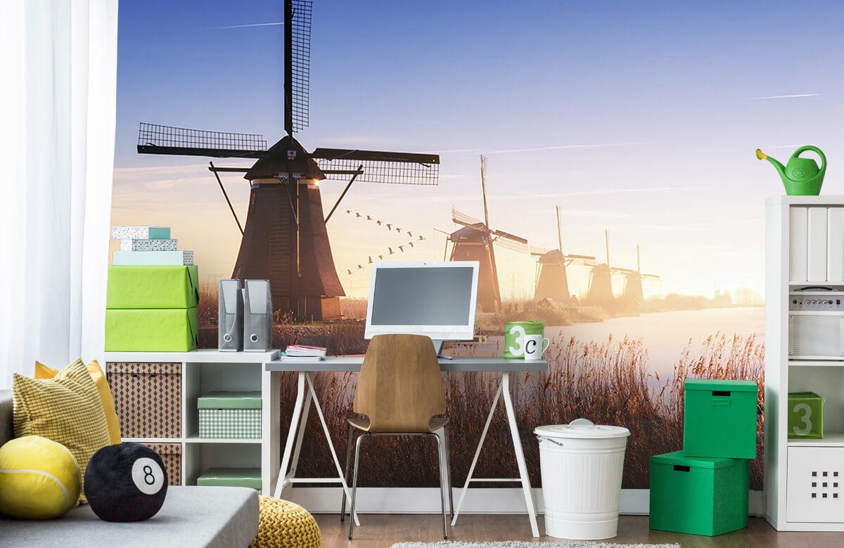 Landscape Kinderdijk 4 11