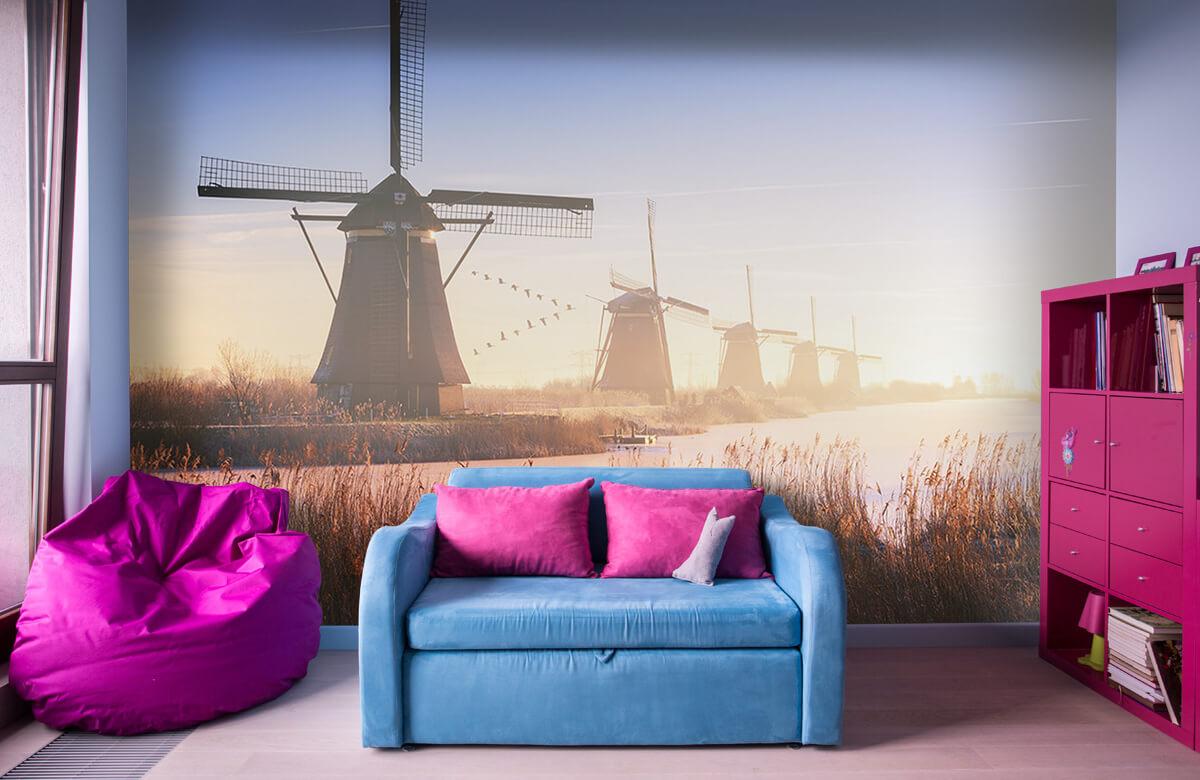 Landscape Kinderdijk 4 2