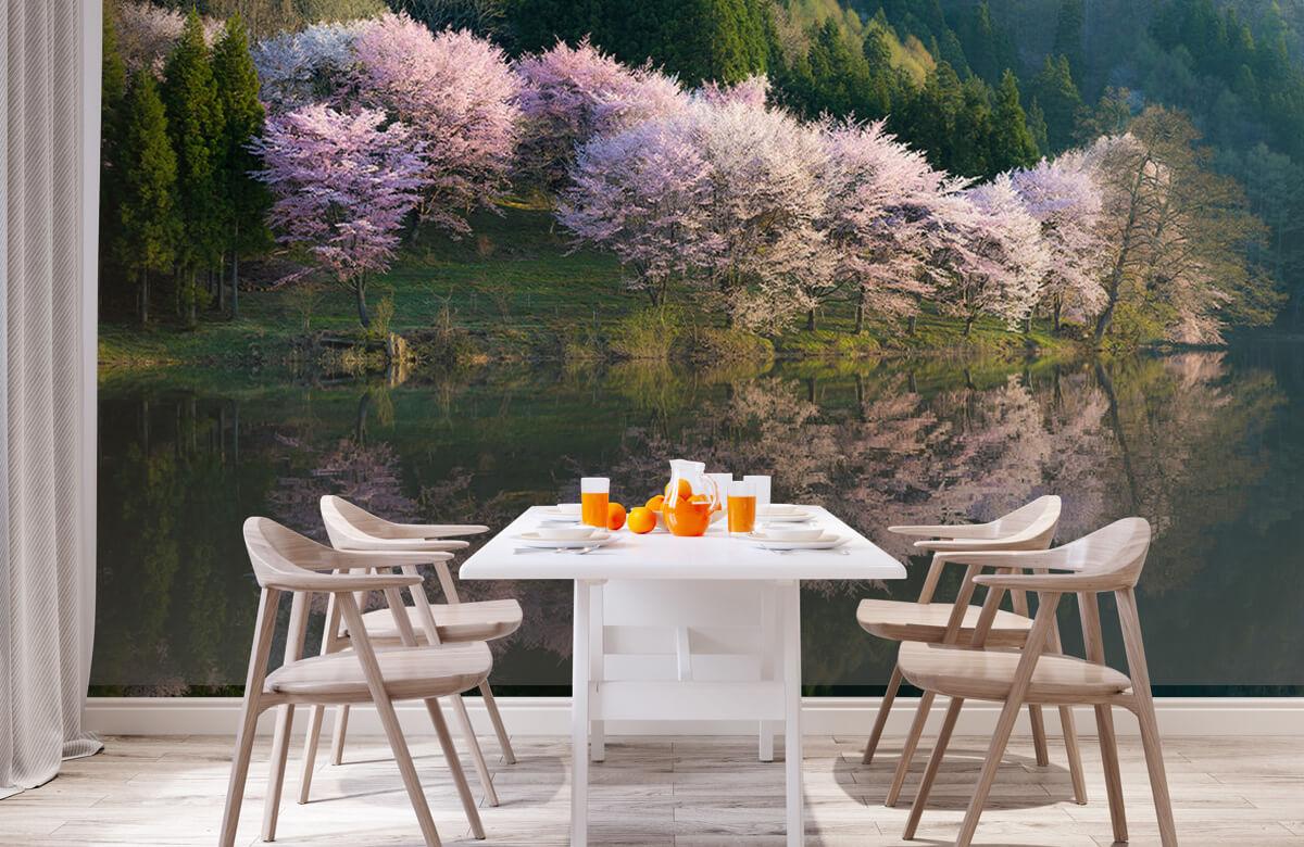 Landscape Sakura 2