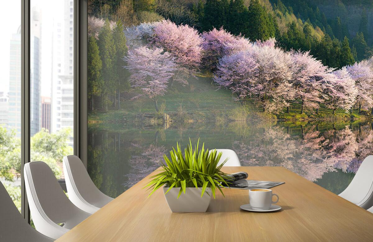 Landscape Sakura 5