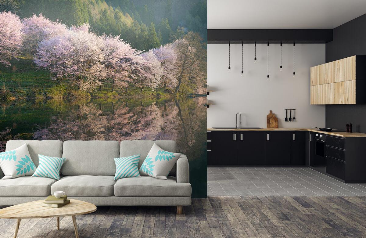 Landscape Sakura 9