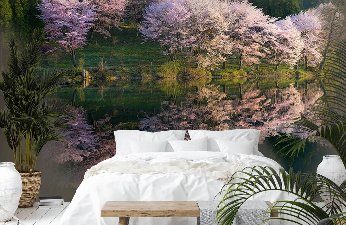 Landscape Sakura 3