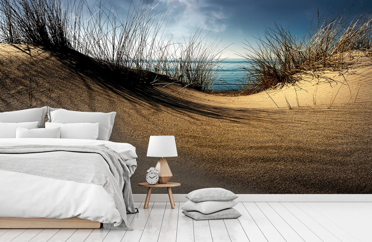 Landschap Dunes 7