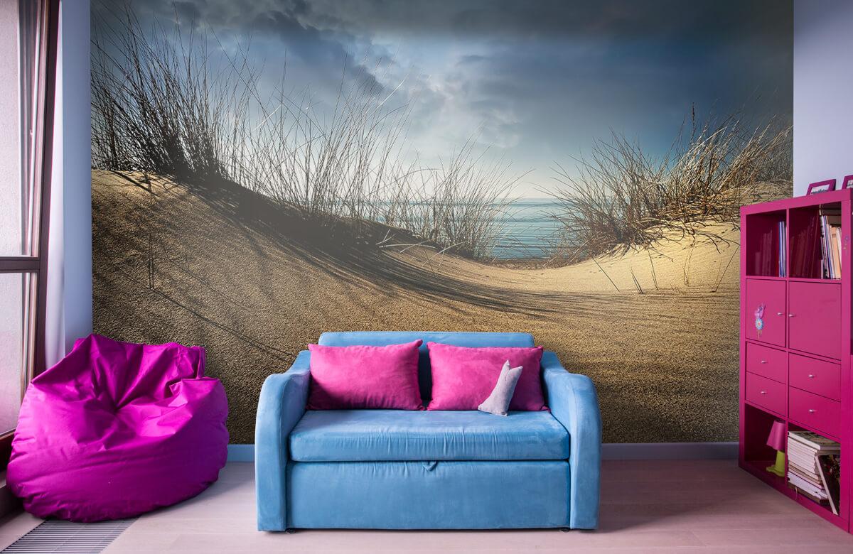 Landschap Dunes 2