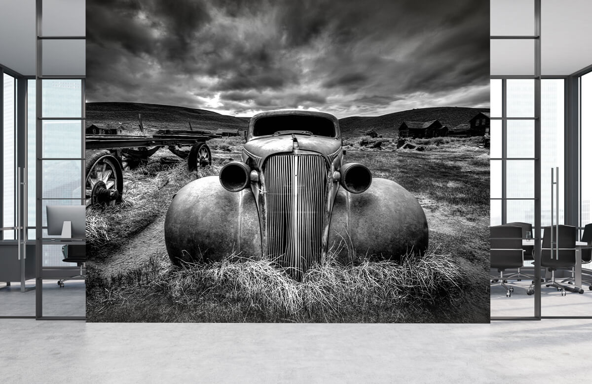Landschap Too Old to Drive 6