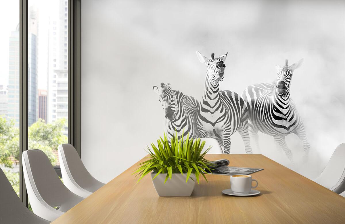 Wilde dieren Zebras 6