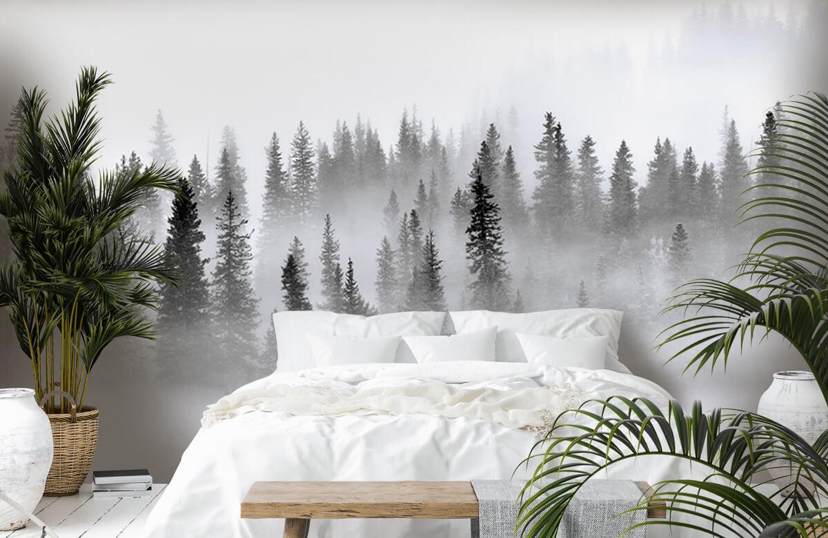Landschap Foggy Forest 2