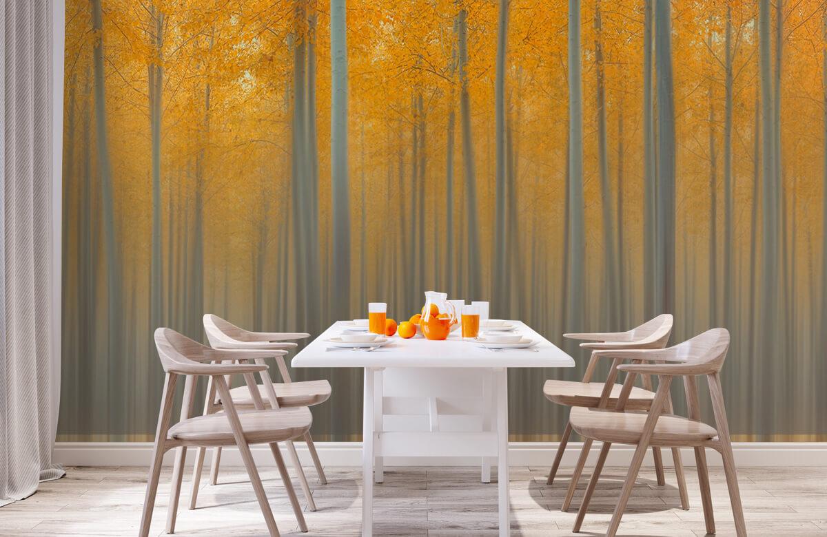 Autumn Delight 2