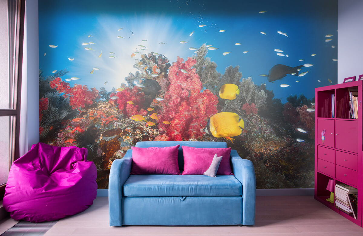 Reef life 1