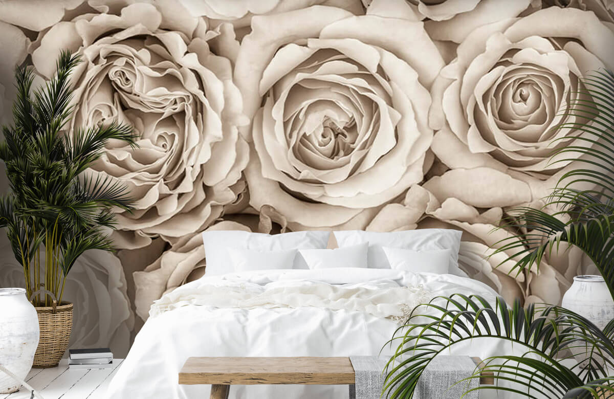 Background of roses 8