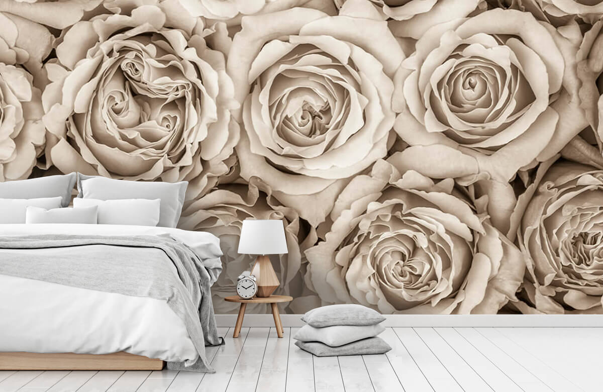 Background of roses 11