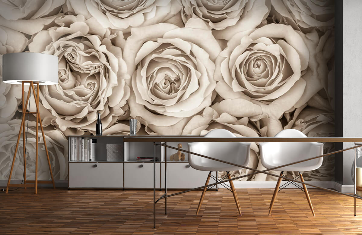 Background of roses 4