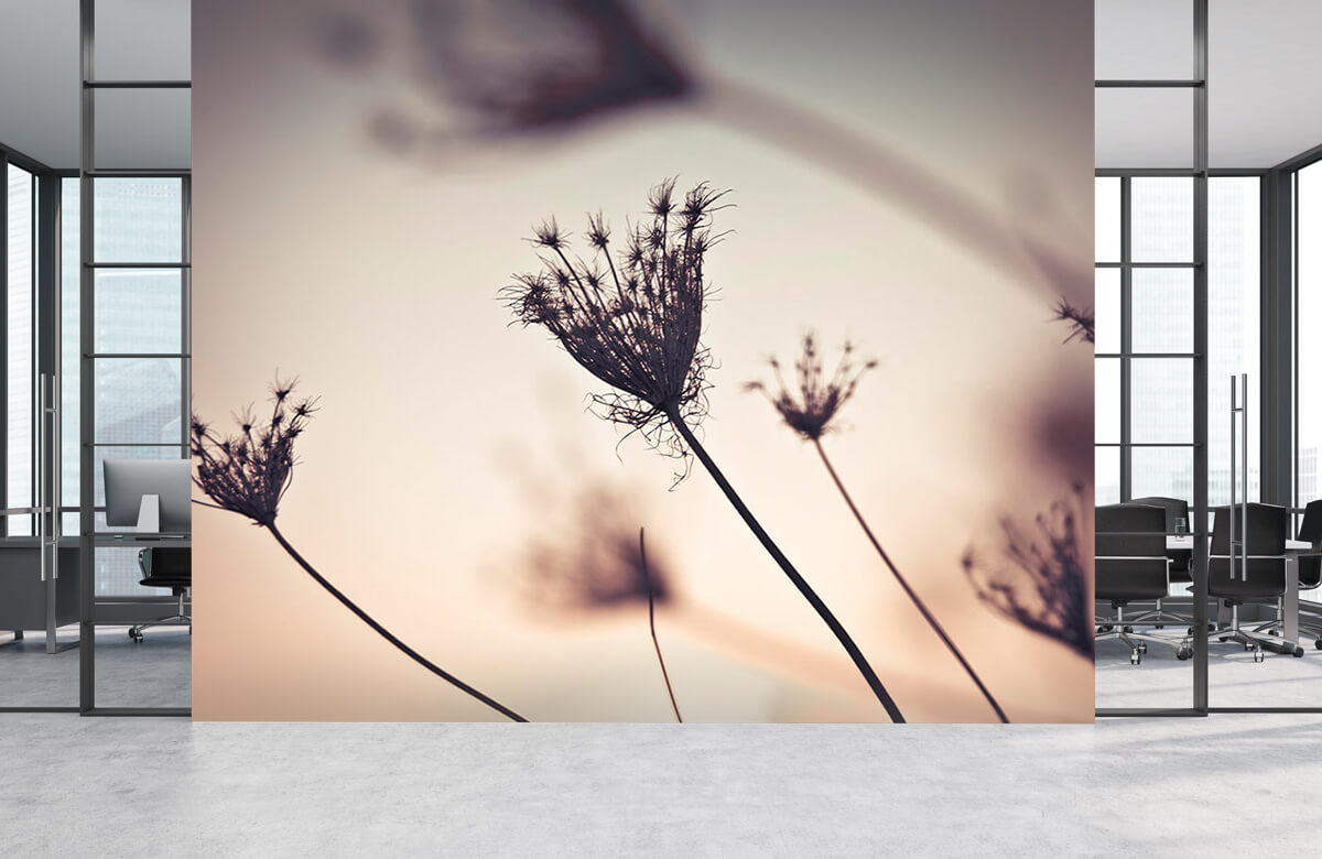 Silhouettes of plants 5
