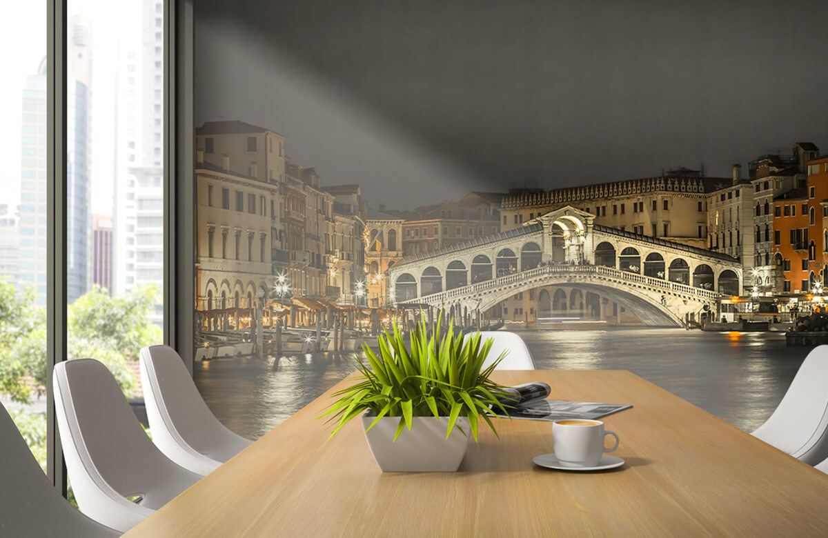 Rialto bridge in the evening 5