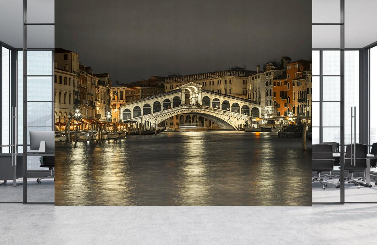 Rialto bridge in the evening 4