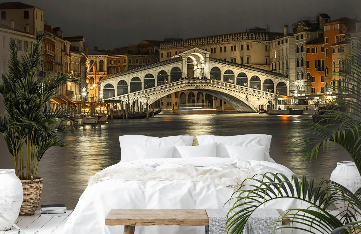 Rialto bridge in the evening 6
