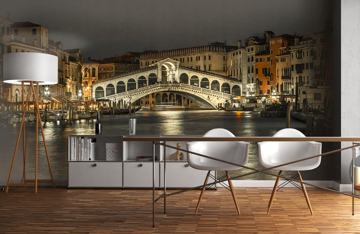 Rialto bridge in the evening 1