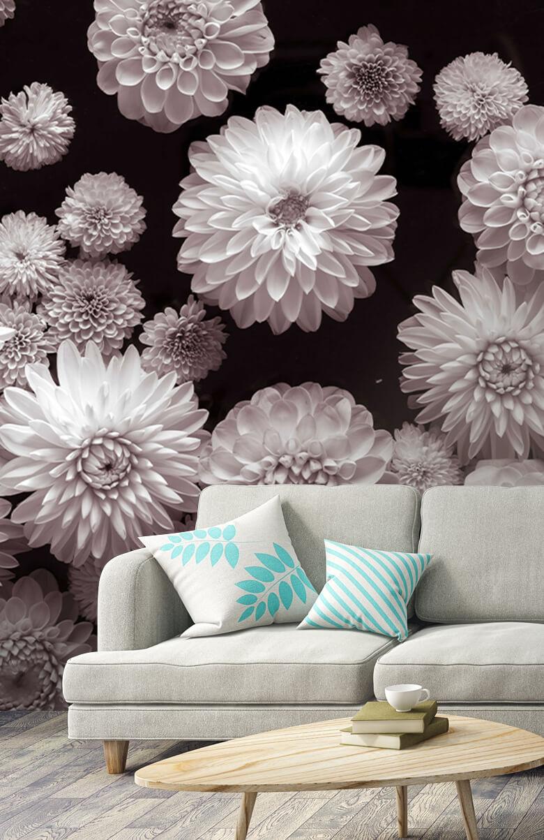 Dahlia Flowers 5