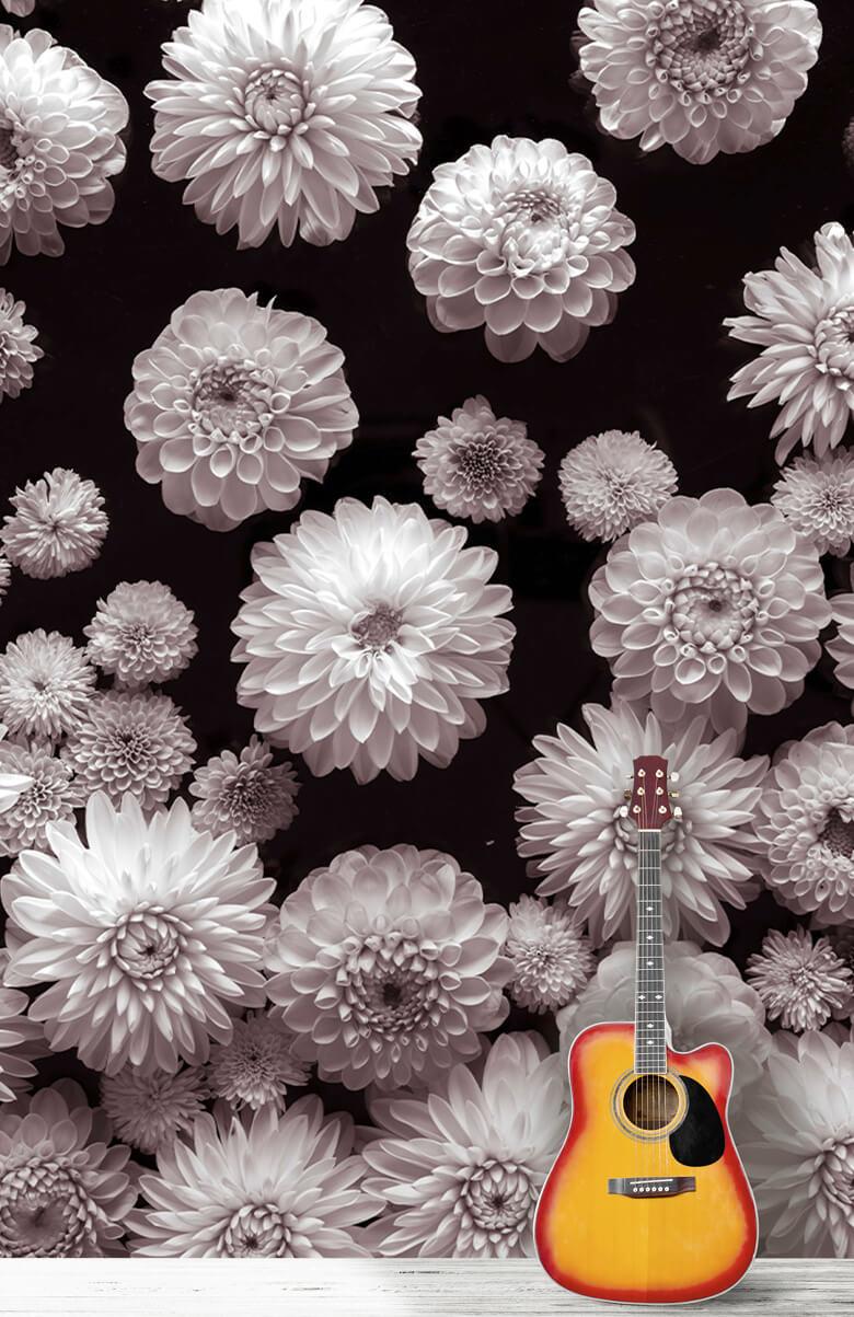 Dahlia Flowers 9