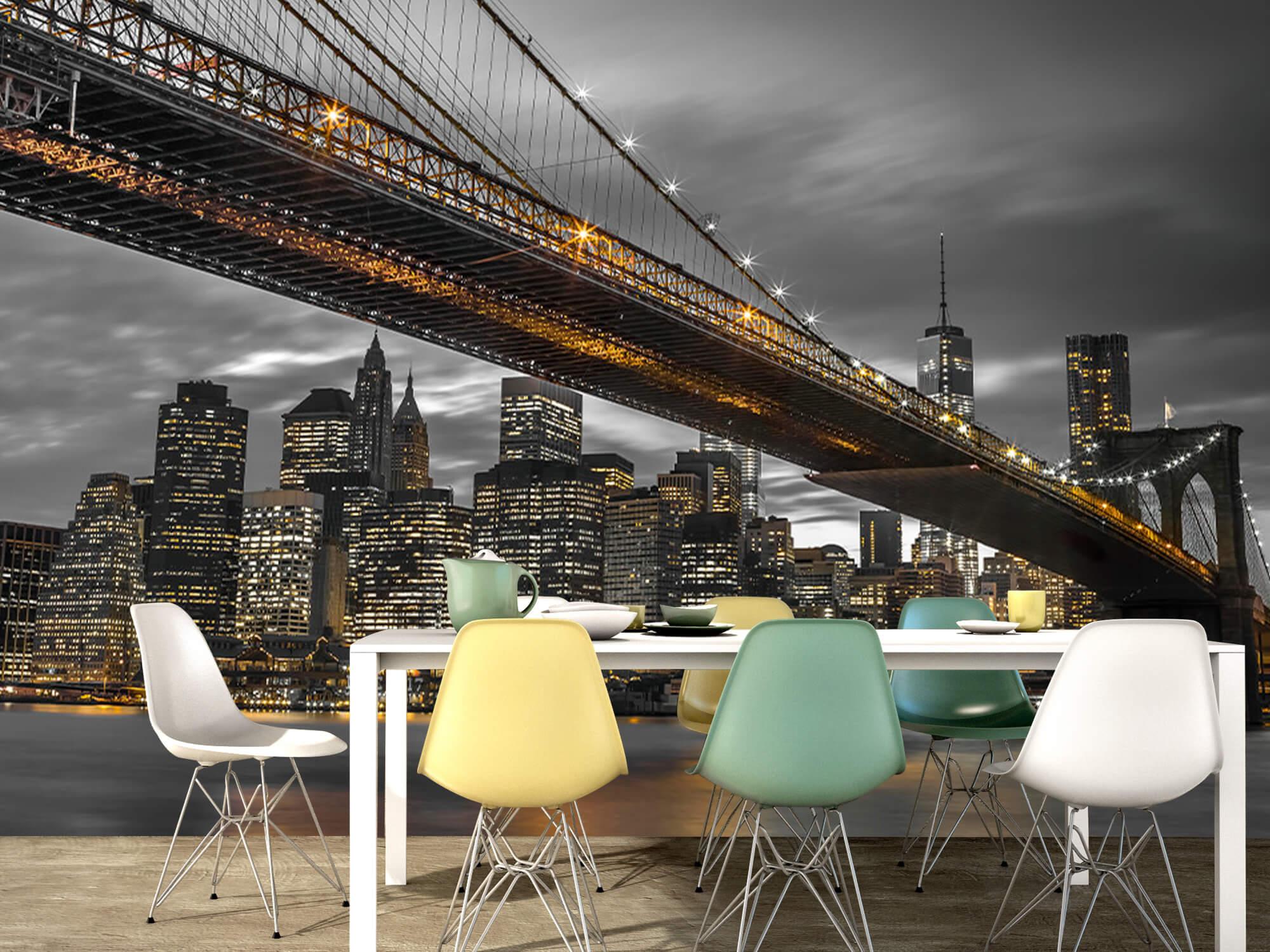Brooklyn Bridge, New York 13