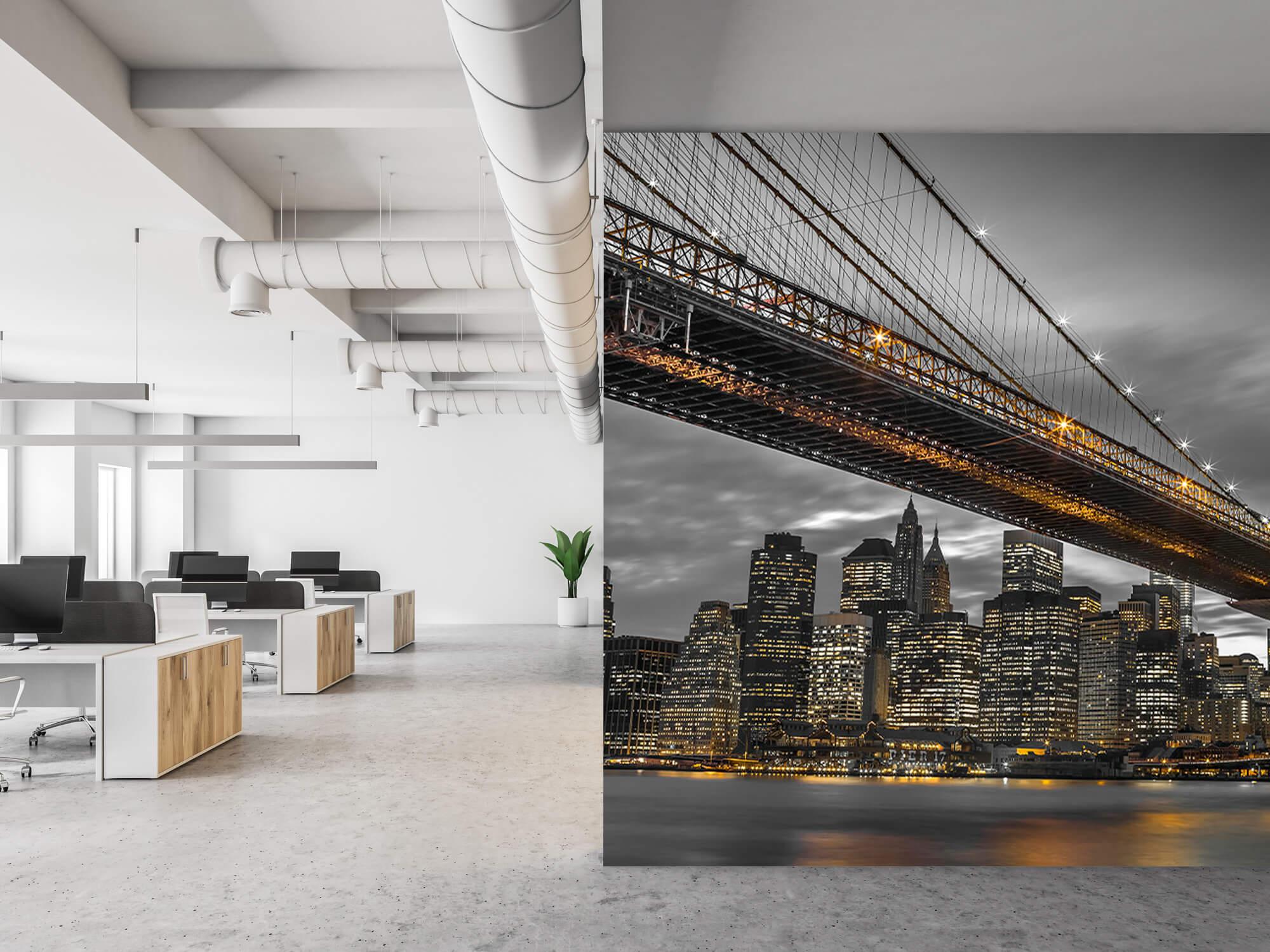 Brooklyn Bridge, New York 16
