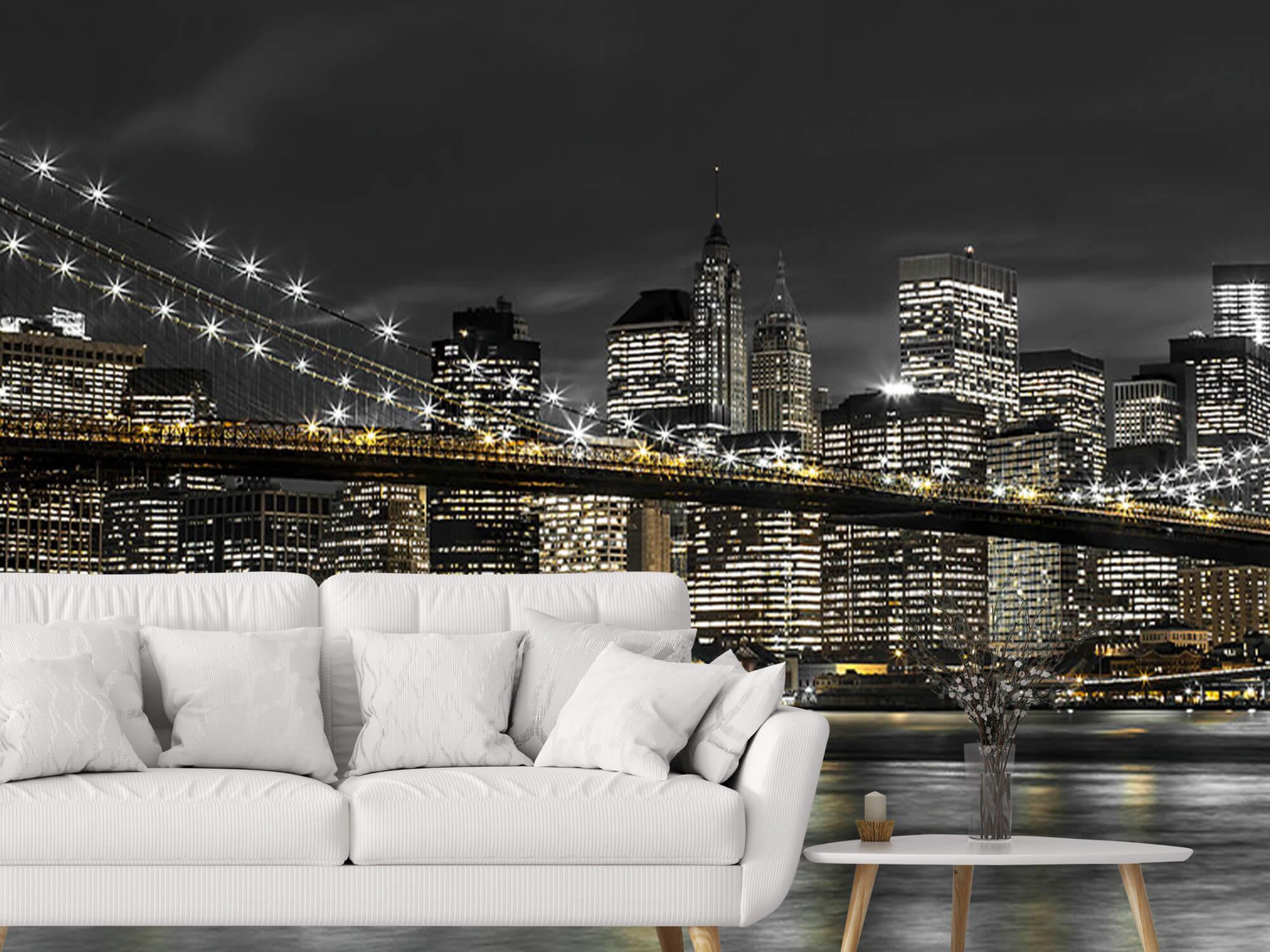 Brooklyn Bridge at Night 6