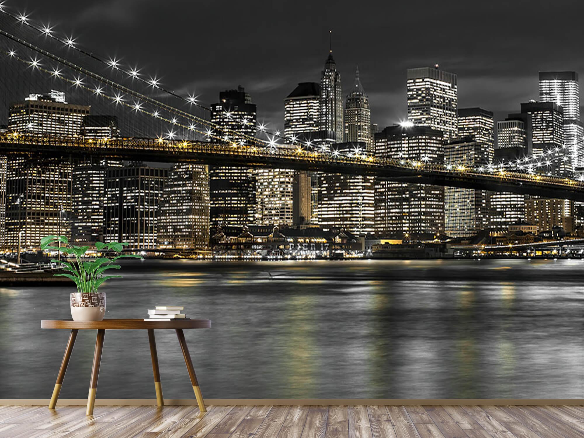 Brooklyn Bridge at Night 9