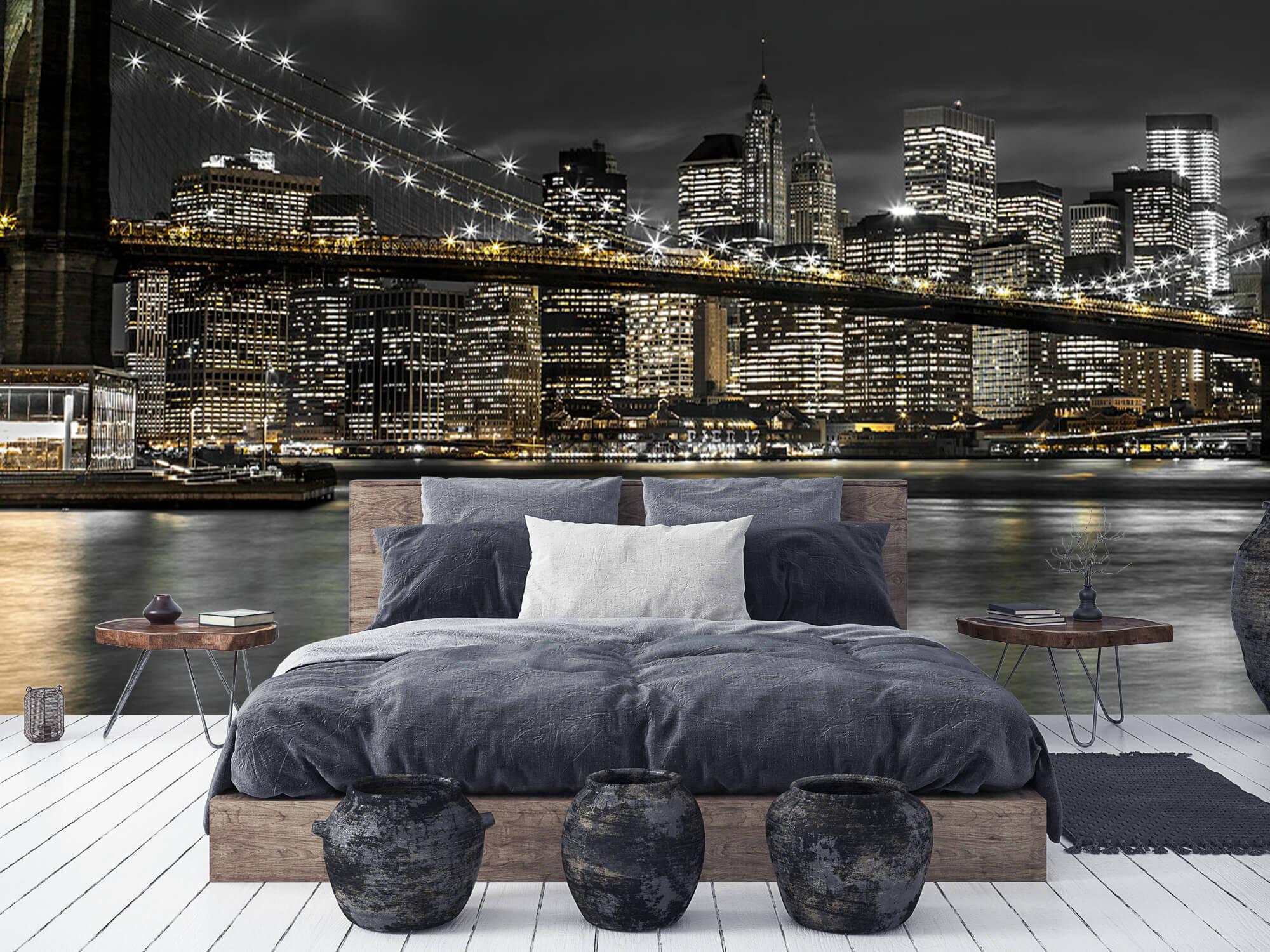 Brooklyn Bridge at Night 11