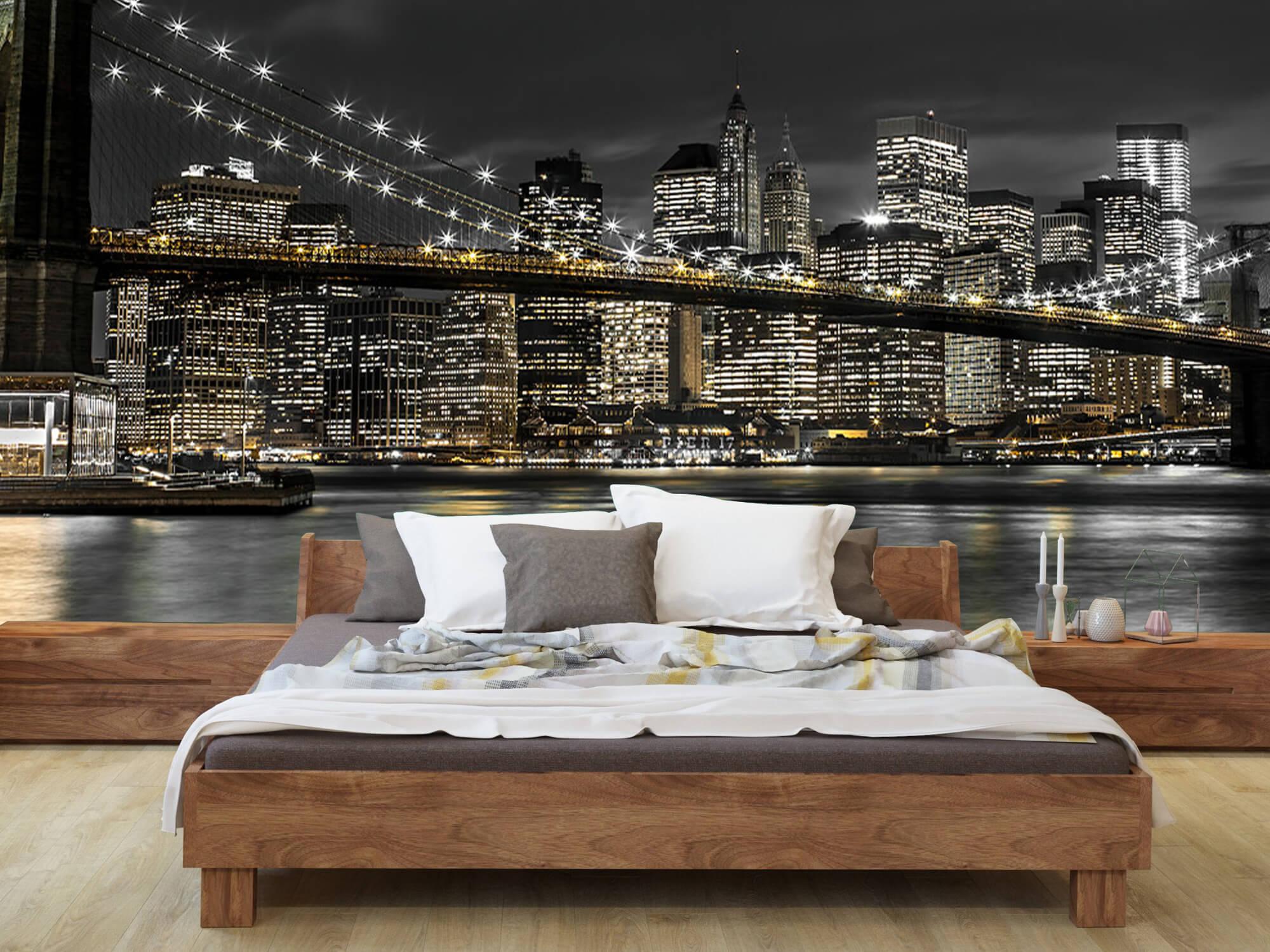 Brooklyn Bridge at Night 7