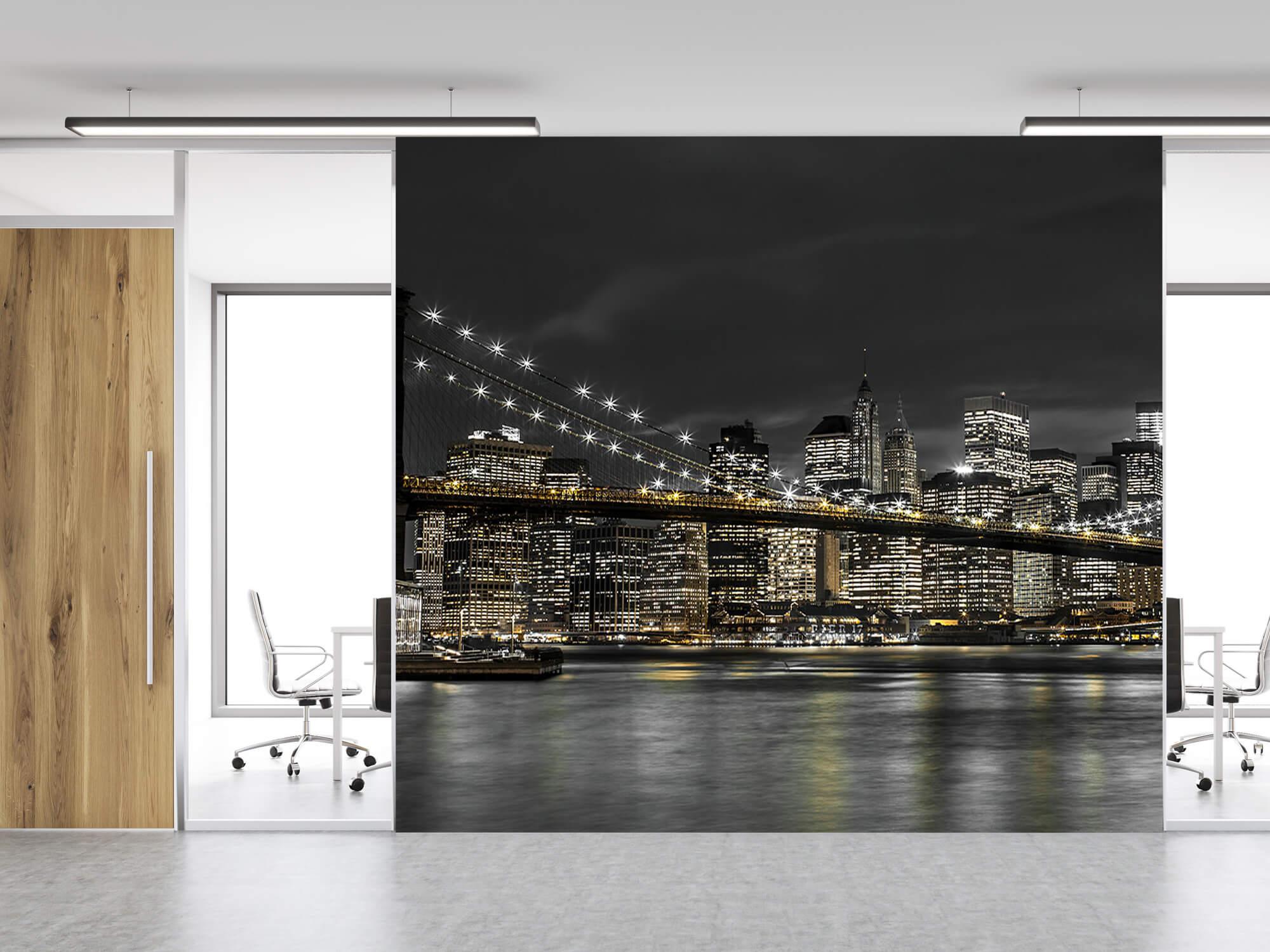 Brooklyn Bridge at Night 14