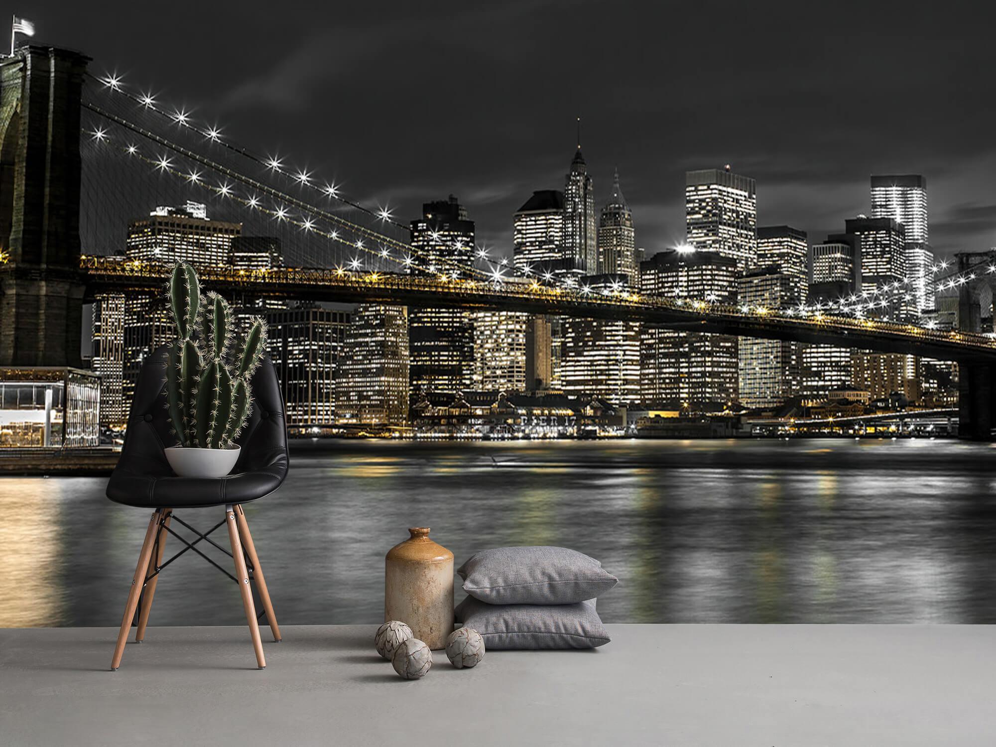 Brooklyn Bridge at Night 15