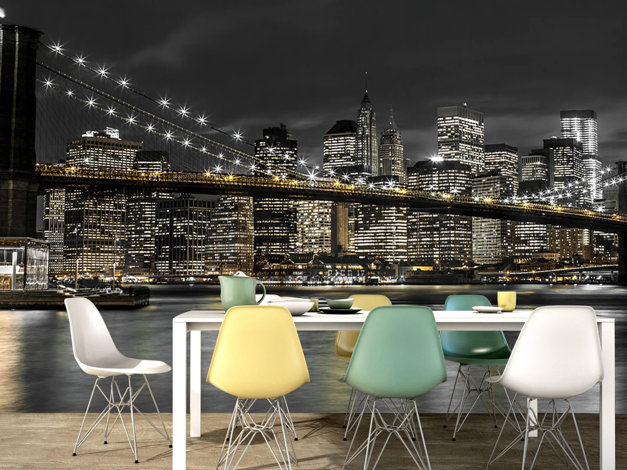 Brooklyn Bridge at Night 16