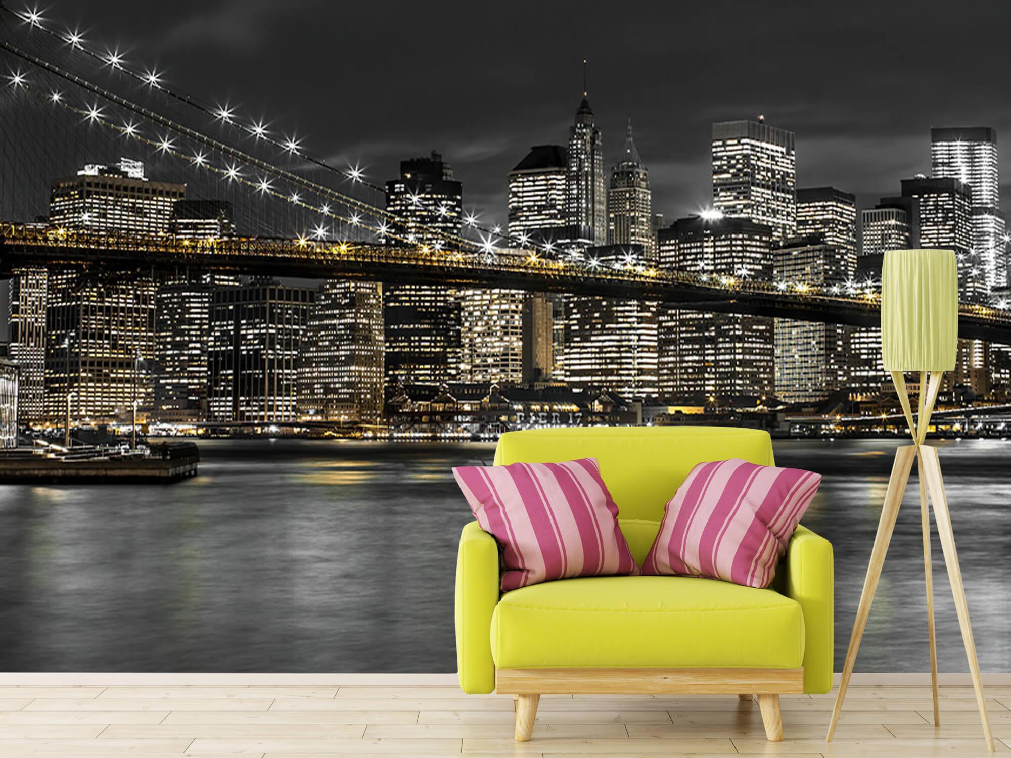 Brooklyn Bridge at Night 18