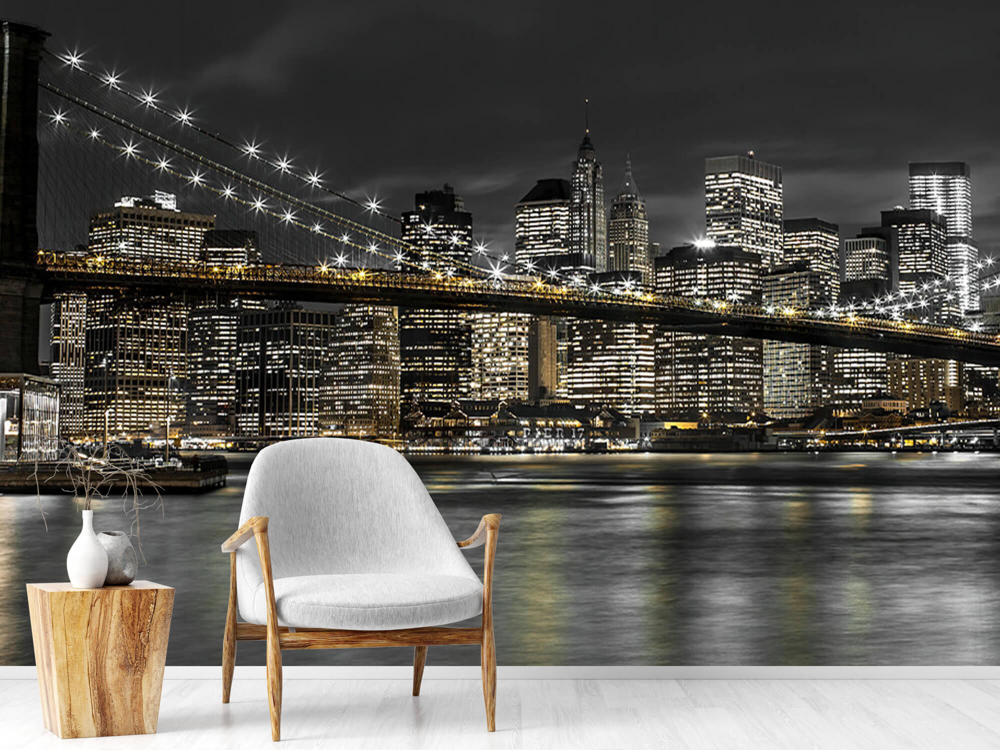 Brooklyn Bridge at Night 19