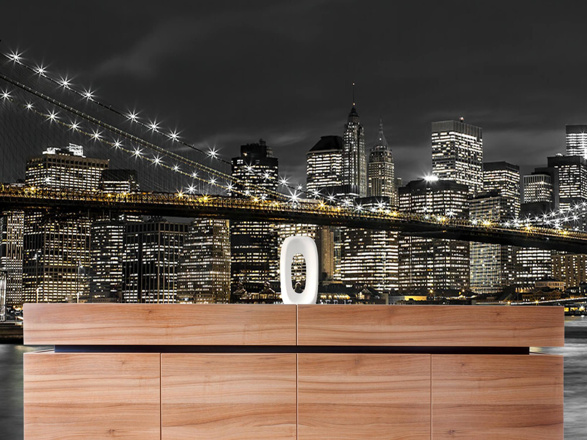 Brooklyn Bridge at Night 22