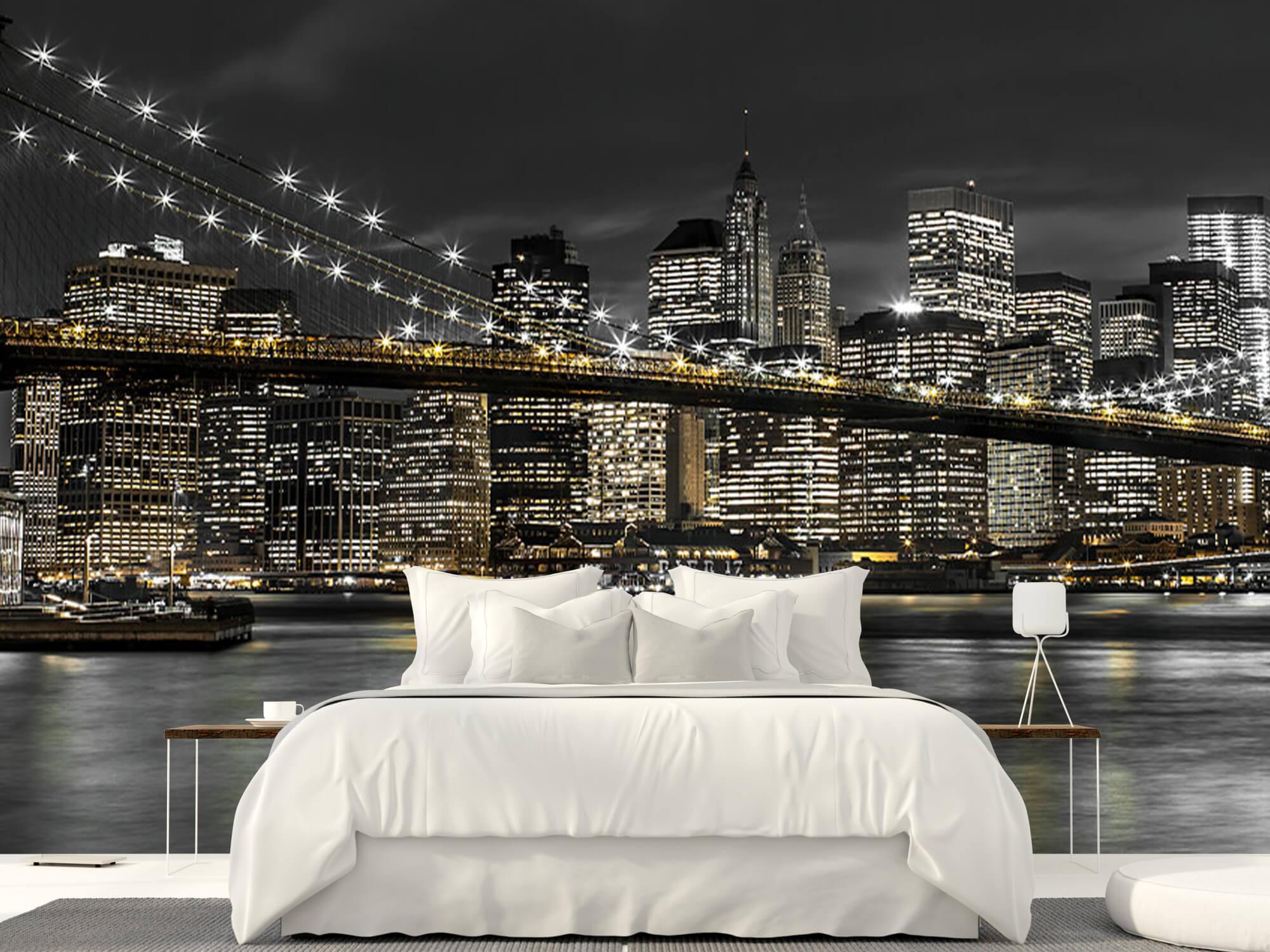 Brooklyn Bridge at Night 4