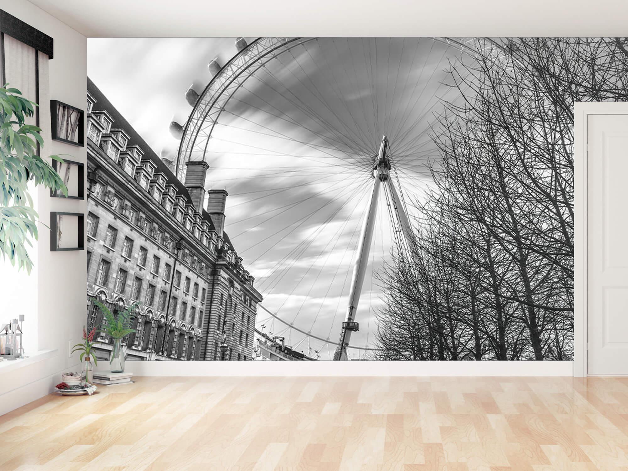 Ferris wheel in London 11
