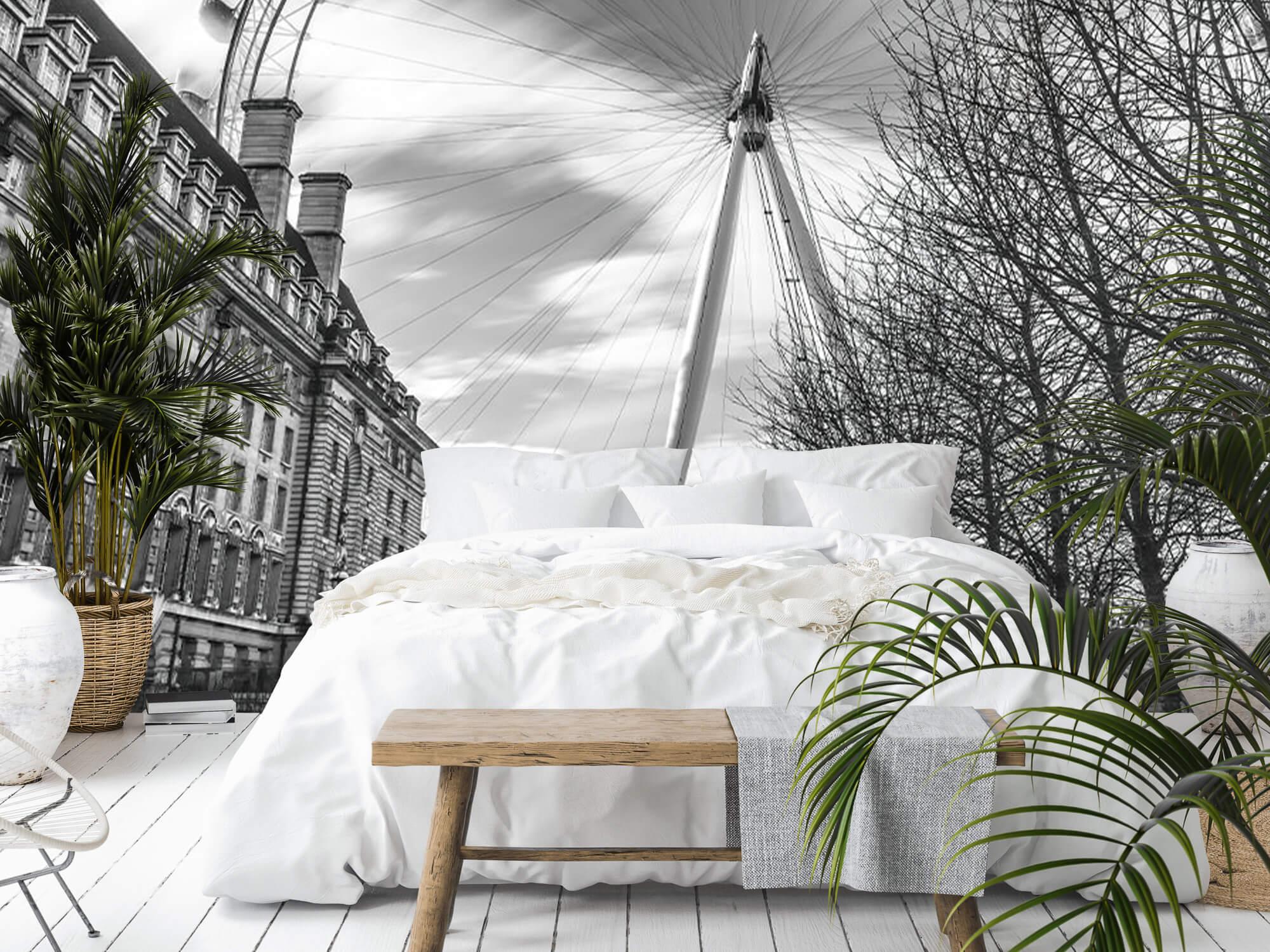 Ferris wheel in London 13