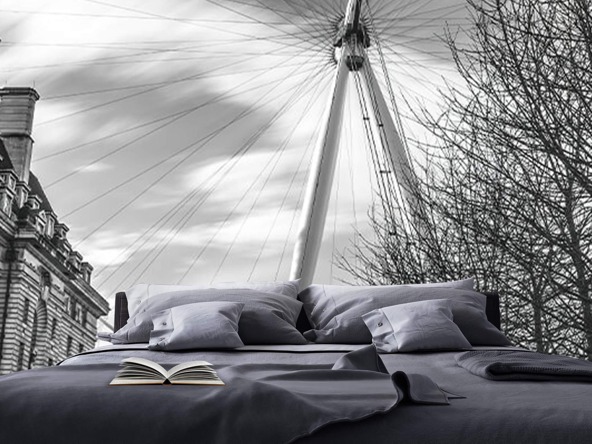 Ferris wheel in London 18
