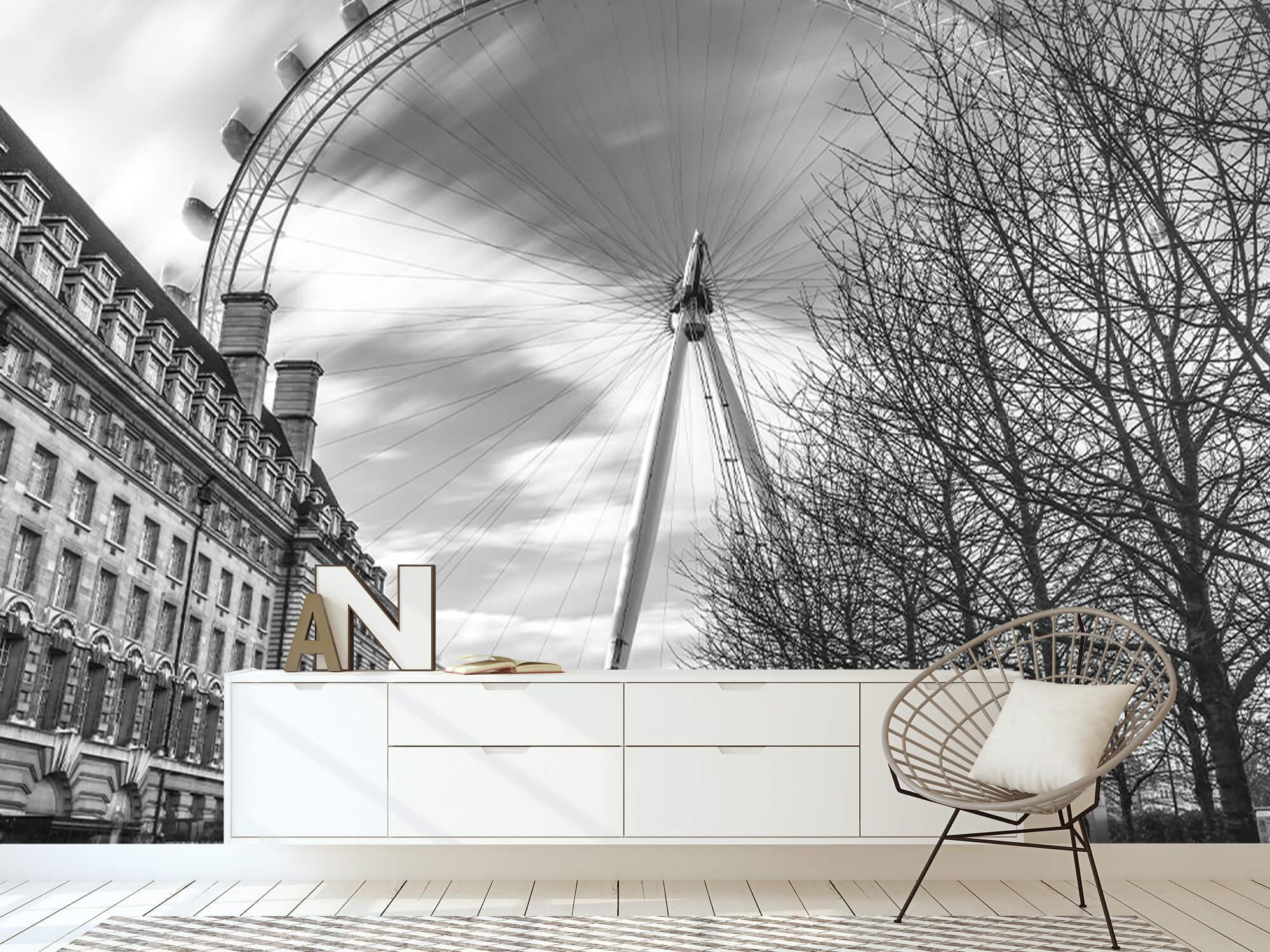 Ferris wheel in London 19