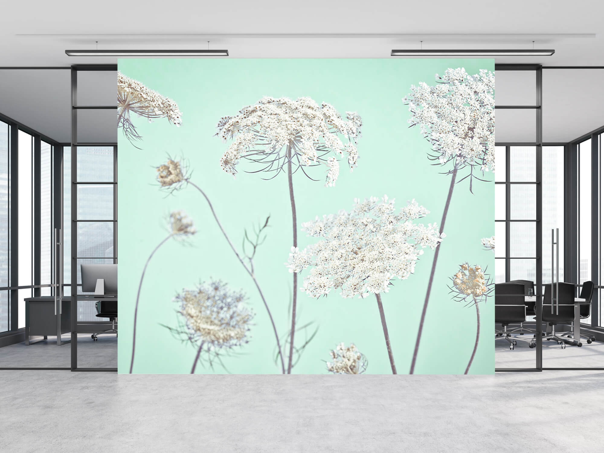 Cow parsley, green 12