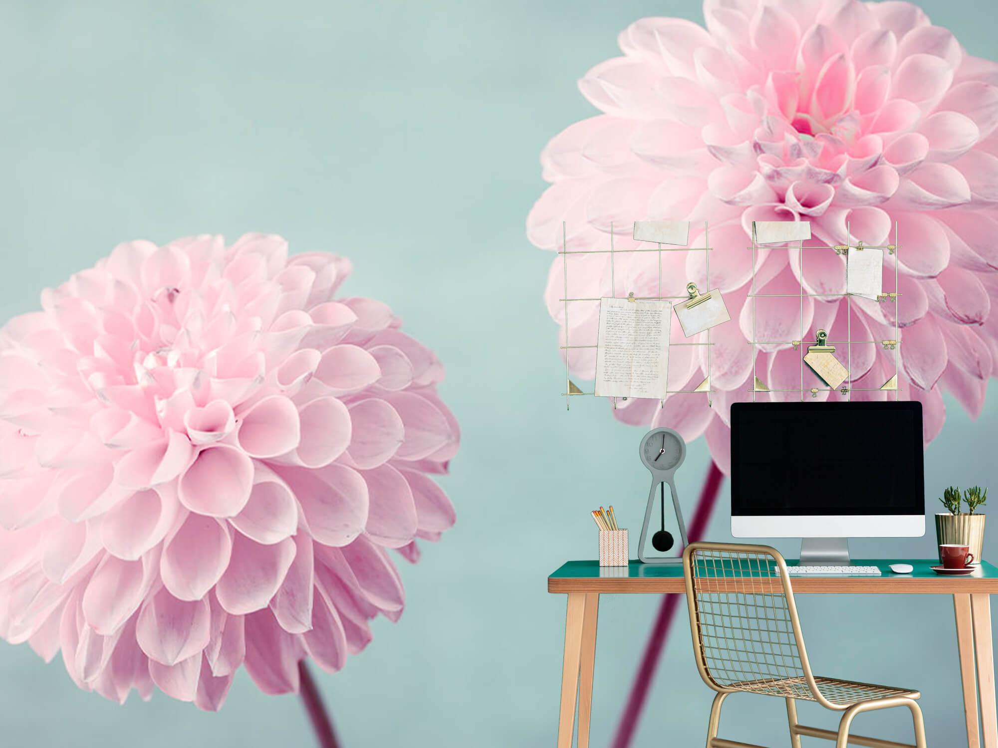 Two Dahlia Flowers 10